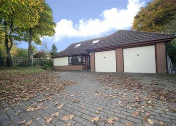 Thumbnail 5 bed detached bungalow for sale in Oakwell Close, Dunstable, Bedfordshire