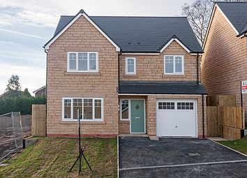 Thumbnail 1 bed detached house for sale in Meadow View, Read
