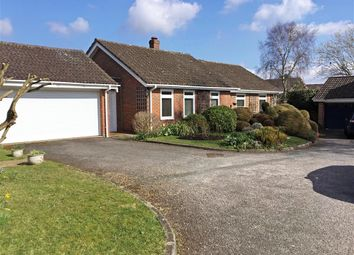 Thumbnail 3 bed detached bungalow for sale in Moggs Mead, Petersfield, Hampshire