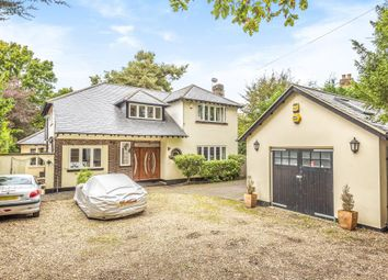 Thumbnail 5 bed detached house to rent in Camberley, Surrey