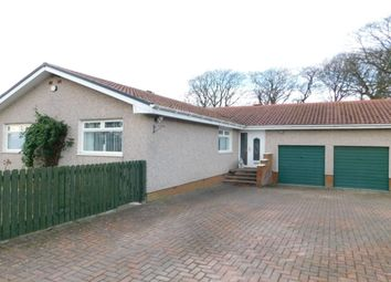 Thumbnail 5 bed bungalow to rent in Kersewell Avenue, Carnwath, Lanark