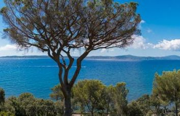 Thumbnail Property for sale in Sainte-Maxime, Sainte-Maxime, Provence-Alpes-Côte D'azur, France