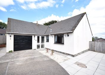 Thumbnail 3 bed bungalow for sale in Town Meadow, Little Torrington, Torrington