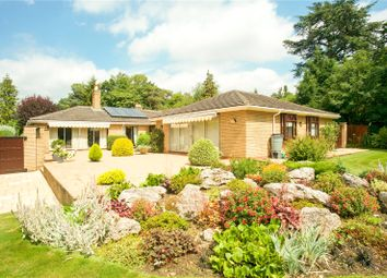 Thumbnail 5 bed detached bungalow for sale in Moreton Paddox, Moreton Morrell, Warwick