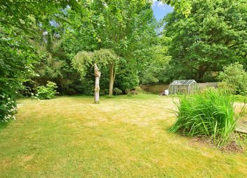 Thumbnail 4 bed bungalow for sale in Parkgate Road, Newdigate, Dorking, Surrey