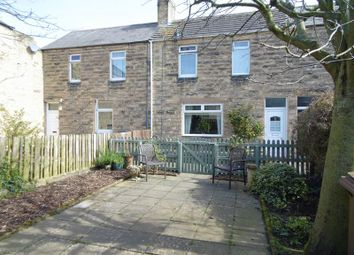 Thumbnail 3 bed property for sale in Northumbria Terrace, Amble, Morpeth
