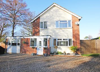 Thumbnail 4 bedroom detached house for sale in Norfolk Avenue, Newmarket