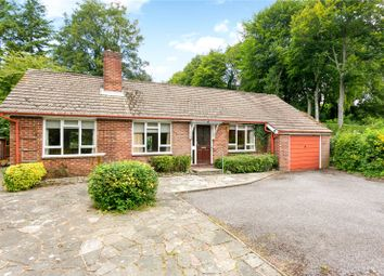 Thumbnail 3 bed detached house for sale in Medstead Road, Beech, Alton, Hampshire