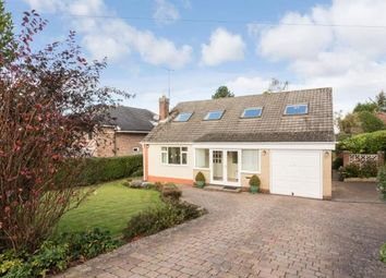 Thumbnail 4 bed detached house for sale in Edge Hill, Darras Hall, Ponteland, Northumberland