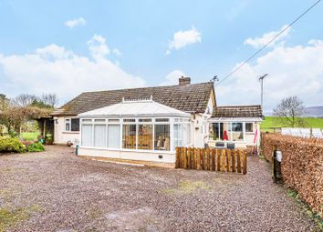 Thumbnail 3 bed detached bungalow for sale in Combe Florey, Taunton