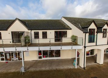 Thumbnail 2 bed flat for sale in Glanvilles Mill, Ivybridge