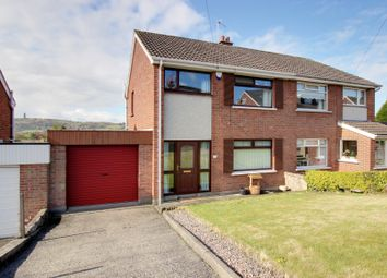Thumbnail 3 bed semi-detached house for sale in Pascali Drive, Newtownards