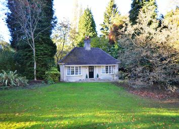 Thumbnail 3 bed bungalow to rent in Spring Gardens, Jubilee Road, Finchampstead, Wokingham