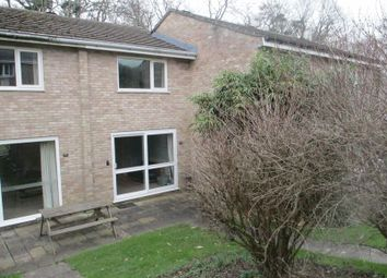 Thumbnail 2 bed terraced house for sale in Newquay