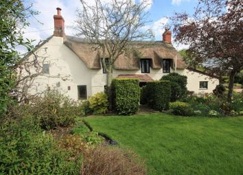 Thumbnail 4 bed property for sale in Wyndham Close, Long Street, Williton, Taunton