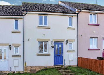 Thumbnail 2 bedroom terraced house for sale in Biddiblack Way, Bideford, Devon