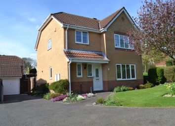 Thumbnail 4 bed detached house for sale in Redhill Lodge Road, Newhall, Swadlincote