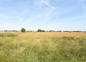 Thumbnail 5 bed detached bungalow for sale in Brockeridge Common, Ripple, Tewkesbury, Gloucestershire