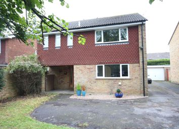 Thumbnail 4 bed detached house to rent in Holyport Road, Holyport, Maidenhead