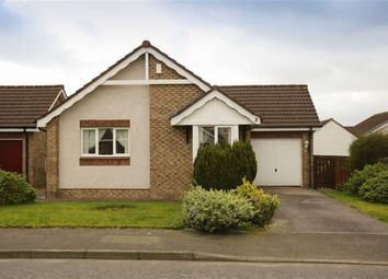 Thumbnail 2 bed detached bungalow for sale in Anson Avenue, Heathhall, Dumfries