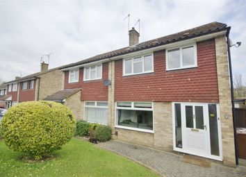 Thumbnail 4 bed semi-detached house to rent in Spring Crofts, Bushey, Hertfordshire