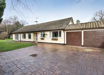 Thumbnail 3 bedroom bungalow to rent in St. Georges Lane, Ascot