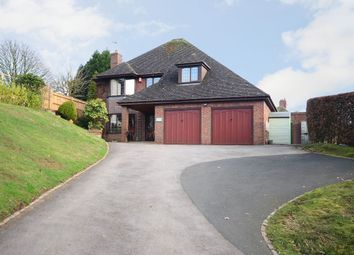 Thumbnail 4 bed detached house for sale in Windmill Hill, Rough Close
