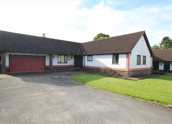 Thumbnail 3 bedroom bungalow for sale in Downing Court, Preston