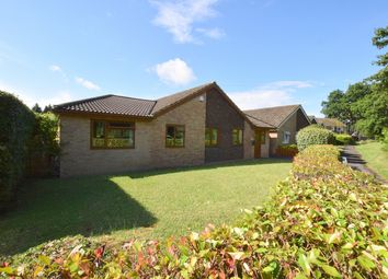 Thumbnail 4 bed detached bungalow for sale in Highland Drive, Oakley, Basingstoke, Hampshire