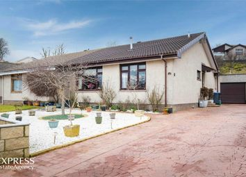 Thumbnail 3 bedroom semi-detached bungalow for sale in Craigarbel Crescent, Inverbervie, Montrose, Aberdeenshire