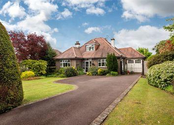 Thumbnail 3 bed detached house for sale in Brockham Lane, Brockham, Betchworth, Surrey