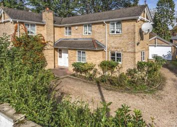 Thumbnail 4 bed detached house for sale in Chetwynd Road, Southampton