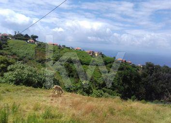 Thumbnail Land for sale in Açougue Velho 9230-144 Santana, São Jorge, Santana