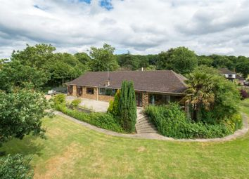 Thumbnail 4 bed bungalow for sale in Mott Street, Loughton, Essex