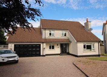 Thumbnail 4 bed detached house for sale in Glebe Manor, Annahilt, Hillsborough