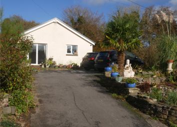 Thumbnail 2 bed detached bungalow for sale in Ty Annor, Lampeter Velfrey, Narberth, Pembrokeshire