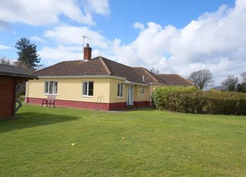 Thumbnail 5 bed detached bungalow for sale in Capel Road, Bentley, Ipswich