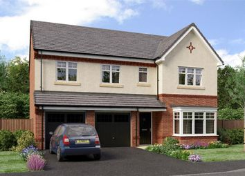 "Thumbnail 5 bed detached house for sale in ""The Buttermere"" at Sadberge Road, Middleton St. George, Darlington"