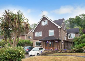 Thumbnail 5 bed detached house for sale in Old Mansion Close, Eastbourne