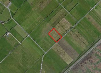 Thumbnail Property for sale in Islandavanna Upper, Tiermaclane, Co. Clare