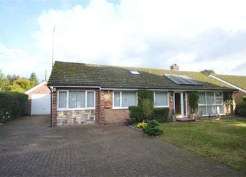 Thumbnail 4 bedroom detached bungalow for sale in Fairholme Road, Newton St Faith, Norwich