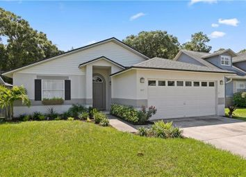 Property For Sale In Clearwater Pinellas County Florida United