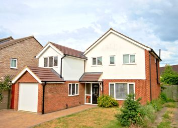 Thumbnail 4 bed detached house to rent in Scotsdowne Road, Trumpington, Cambridge