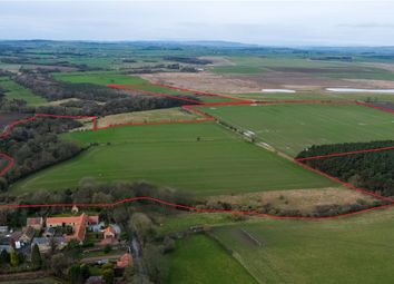 Thumbnail Land for sale in Widdrington, Morpeth