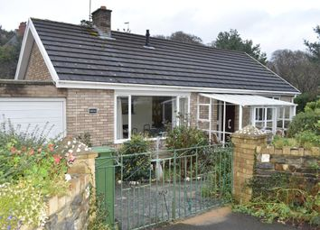 Thumbnail 2 bed detached bungalow to rent in Parcyronnen, Llanbadarn Fawr, Aberystwyth