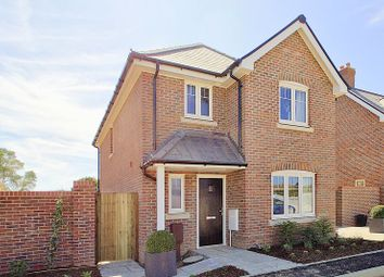 Thumbnail 3 bed detached house for sale in Burndell Road, Yapton, Arundel