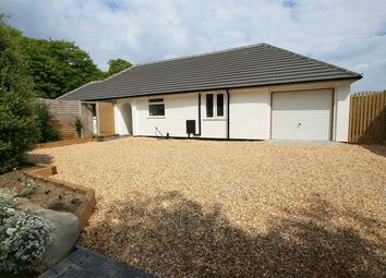 Thumbnail 3 bed detached bungalow for sale in Wainsford Road, Everton, Lymington, Hampshire