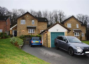 Thumbnail 4 bedroom detached house for sale in Celandine Drive, St Leonards-On-Sea, East Sussex