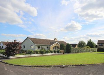 Thumbnail 3 bedroom bungalow for sale in Chestnut Springs, Lydiard Millicent, Wiltshire