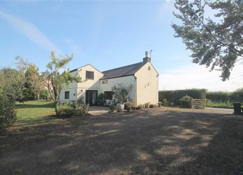 Thumbnail 4 bed cottage for sale in Rodley, Westbury-On-Severn, Gloucestershire